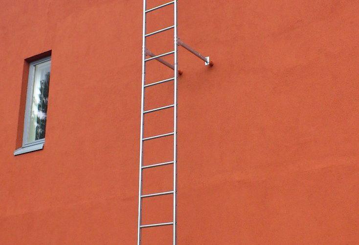 osmankäämintei-28-17.07.2012-20.jpg